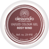 alessandro Farbgel Colour Explosion - Rosy Wind (5 g)
